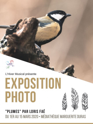 Exposition photo plumes